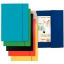 Mapa ESSELTE Economy din carton cu elastic, diverse culori