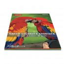 Hartie colorata A4, 50 coli 5 culori DACO 80g/mp