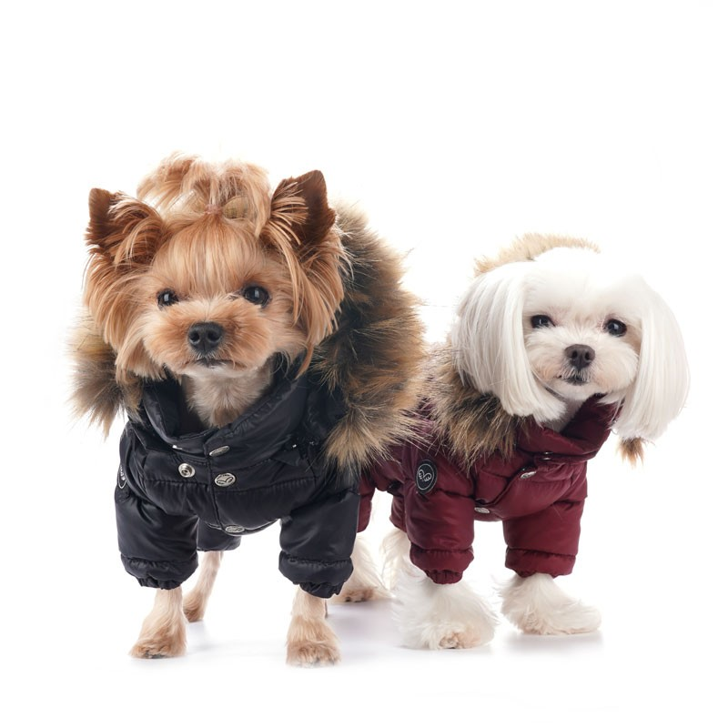 https://s.cdnmpro.com/690984739/p/l/3/salopeta-caini-puppy-angel-double-padding-overalls-pa-ow533~3353.jpg