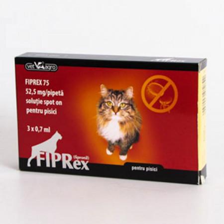 Fiprex pisici
