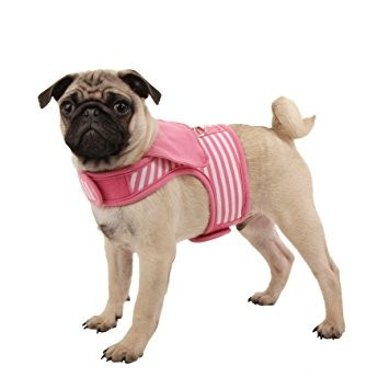 Ham caini Sailor Pinka Pinkaholic