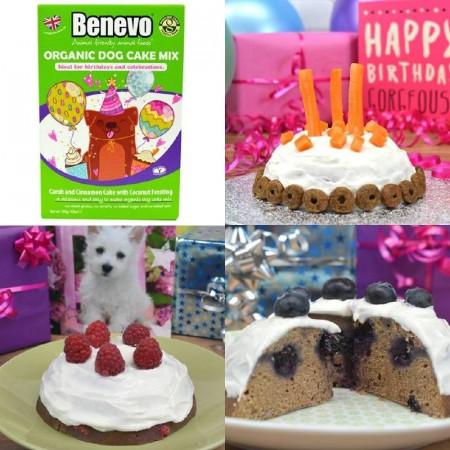 Recompensa tort Benevo, 140g, pentru caini