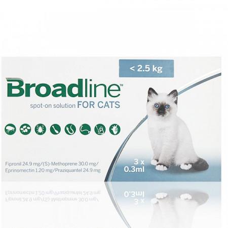 BROADLINE soluţie spot-on pentru pisici < 2,5 kg