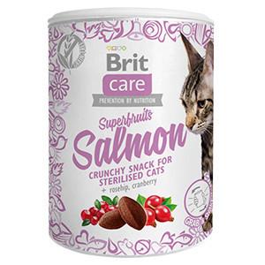 Brit Care Cat Snack Superfruits Salmon 100 g