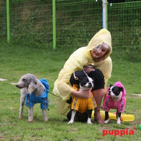Haina caini Puppia Base Jumper (de ploaie)