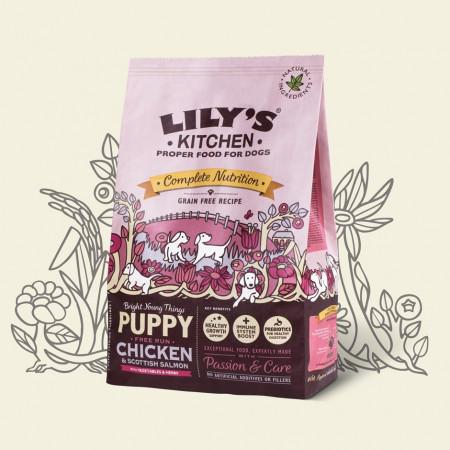 Hrana uscata pentru caini Lily's Kitchen Puppy Chicken 1kg