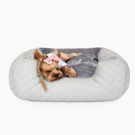 Poze Pat caini Puppy Angel Love Luxury PA-BD096