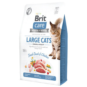 Brit Care Cat GF Large Cats Power and Vitality 2 kg