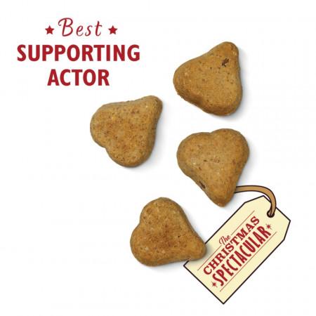 Recompense Lily's Kitchen- biscuiti de Craciun,100g, pentru caini