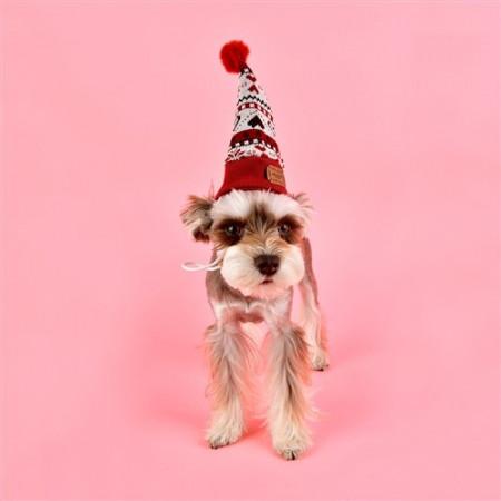 Poze Caciula caini Pinkaholic Joy