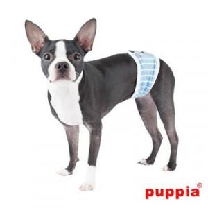 Banda ,,Bune-Maniere'' caini Boomer Puppia
