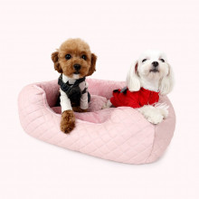 Pat caini Puppy Angel Love Luxury PA-BD096