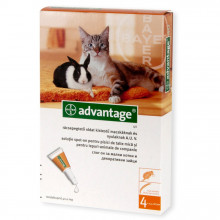 Advantage cat <4kg