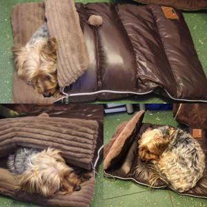 Sac de dormit Puppia Northstar