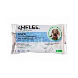 Amflee Dog L 20-40kg