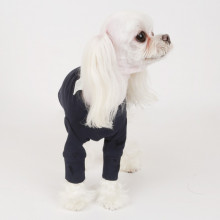 Bluza caini PUPPY ANGEL Daily