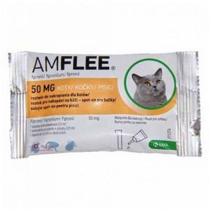 Amflee cat