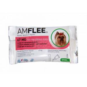 Amflee dog S 2-10kg