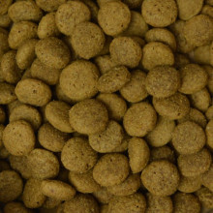 Hrana uscata vegetariana Benevo, certificata organic, 15kg, pentru caini