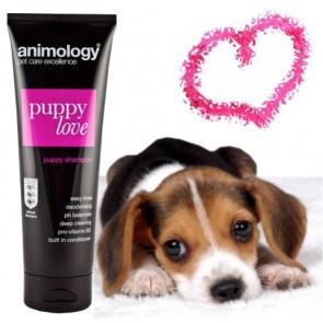 Șampon Animology Puppy Love (pentru juniori)