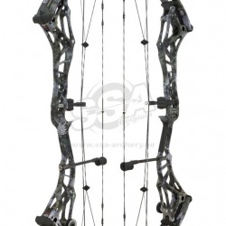 Arc compound Bowtech Realm X