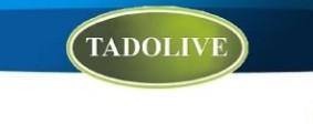 Tadolive
