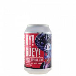 YRIA - Ay Güey