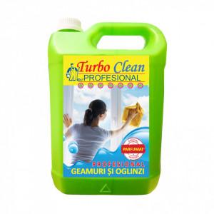 Pachet Engros 4 x 5L Detergent PROFESIONAL de Geamuri și Oglinzi cu Aquaschield