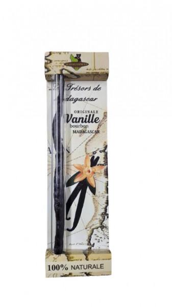 Poze Pastaie de vanilie Madagascar