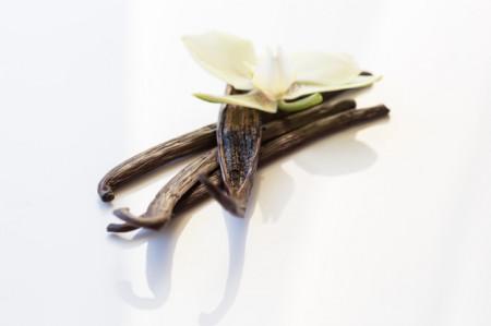 Poze Pudra de vanilie Madagascar 5g