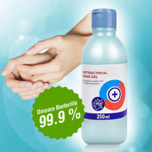 Gel De Maini Antibacterian 250 ml