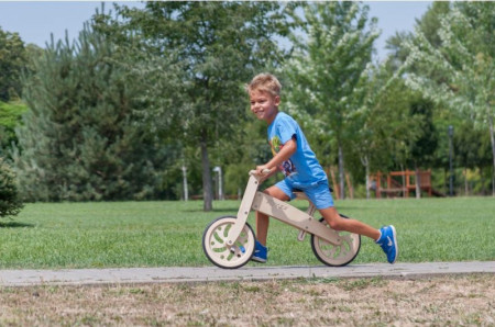 Eko bike BREZA1