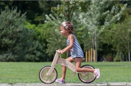 Eko bike DELFIN1