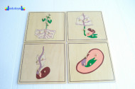 Montesori Botaničke puzzle 4 komada