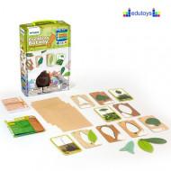 Kreativna botanika 4 igre