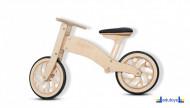 Eko bike DELFIN