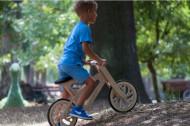 Eko bike CLASSIC3