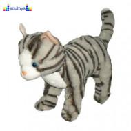 Maca plišana 23 cm