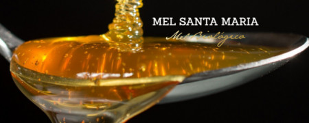 Santa Maria Mel Biologico de Urze 500g