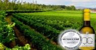 """Alvarinho """"Vinho Verde"""" wine Quinta de Gomariz 0,75l"""