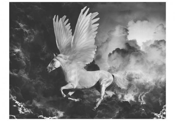 Fototapet - Pegasus on the way to Mount Olympus