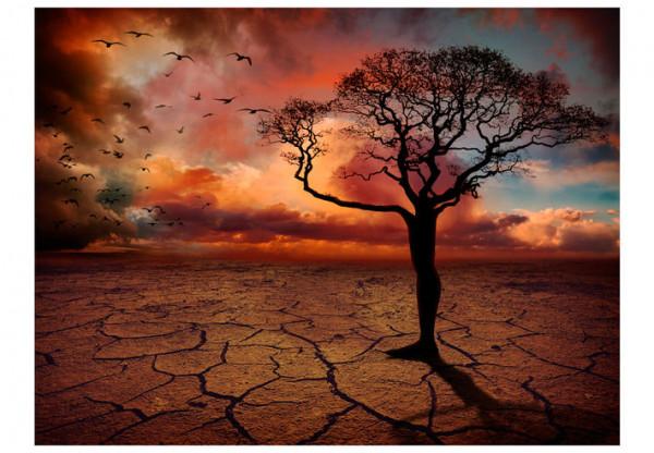 Fototapet - Put down roots