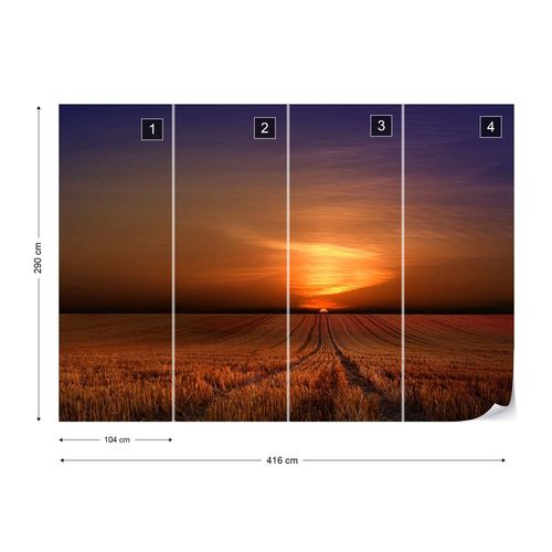 Morning Photo Wallpaper Mural