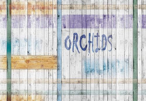 Painted Wood Planks Orchids Photo Wallpaper Wall Mural
