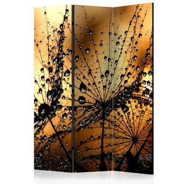 Paravan - Dandelions in the Rain [Room Dividers]