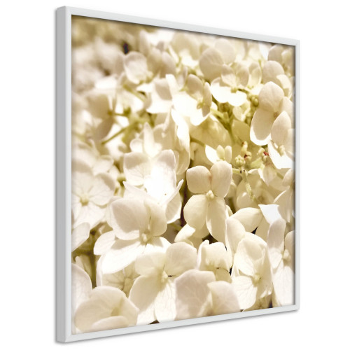 Poster - Soothing Flowers