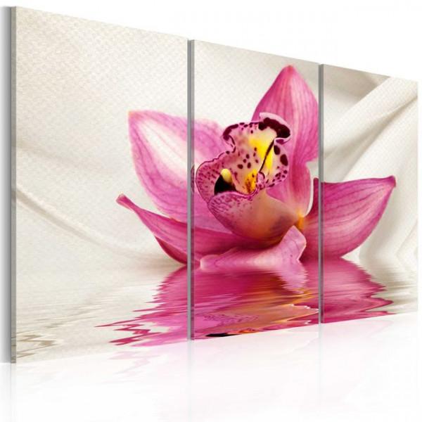 Tablou - Unusual orchid - triptych