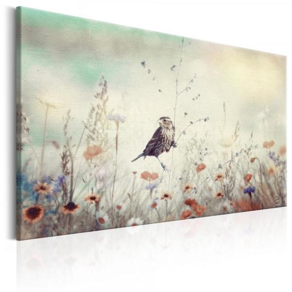 Tablou - Wild Meadow