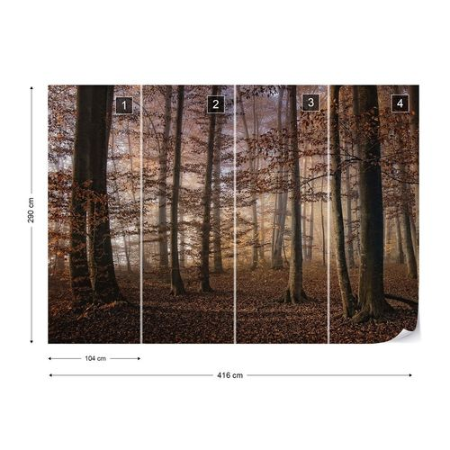 Autumn In The Forest Photo Wallpaper Mural