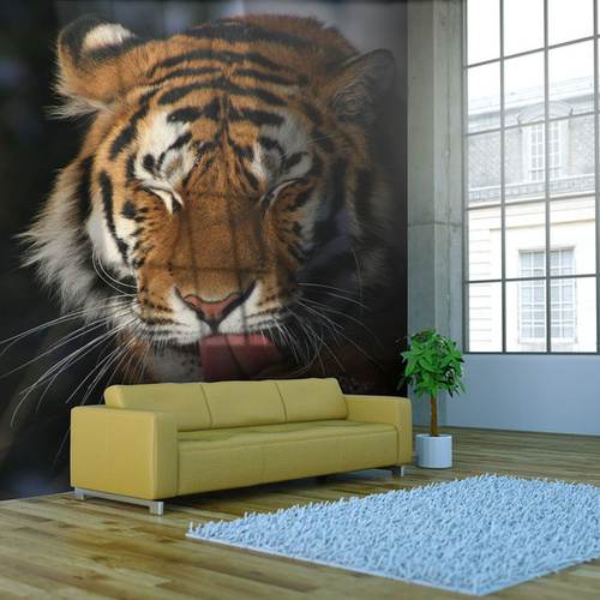 Fototapet - Siberian tiger
